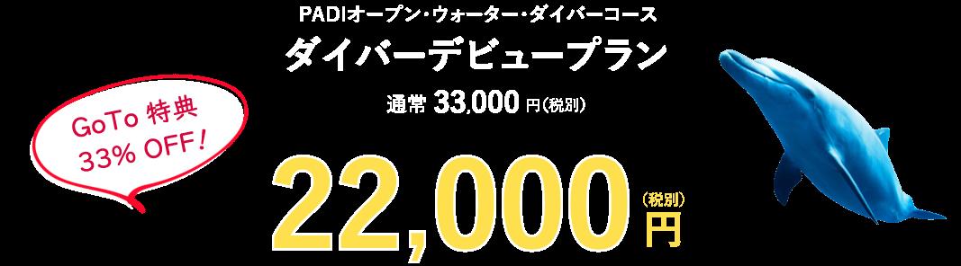 33000円